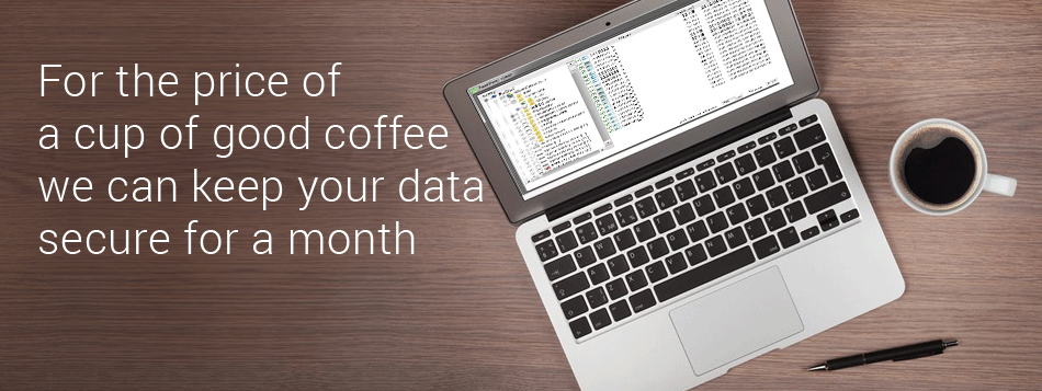 For price of one coffee we can keep your data secure for a month